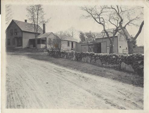 83 Old Derry 1919